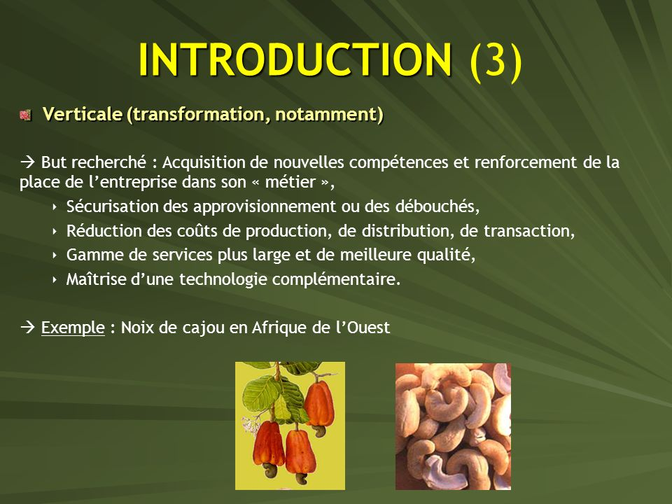 INTRODUCTION (3) Verticale (transformation, notamment)