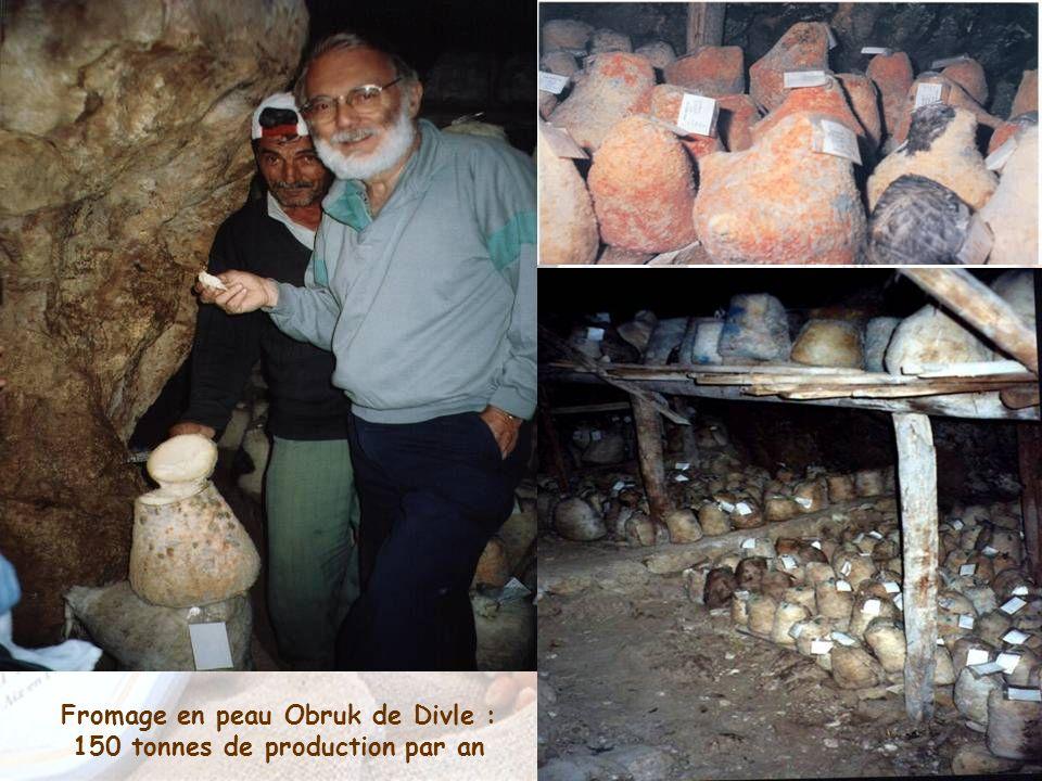 Fromage en peau Obruk de Divle : 150 tonnes de production par an