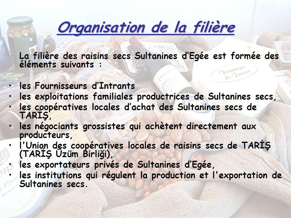 Organisation de la filière