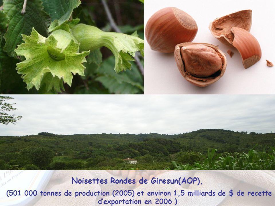 Noisettes Rondes de Giresun(AOP),