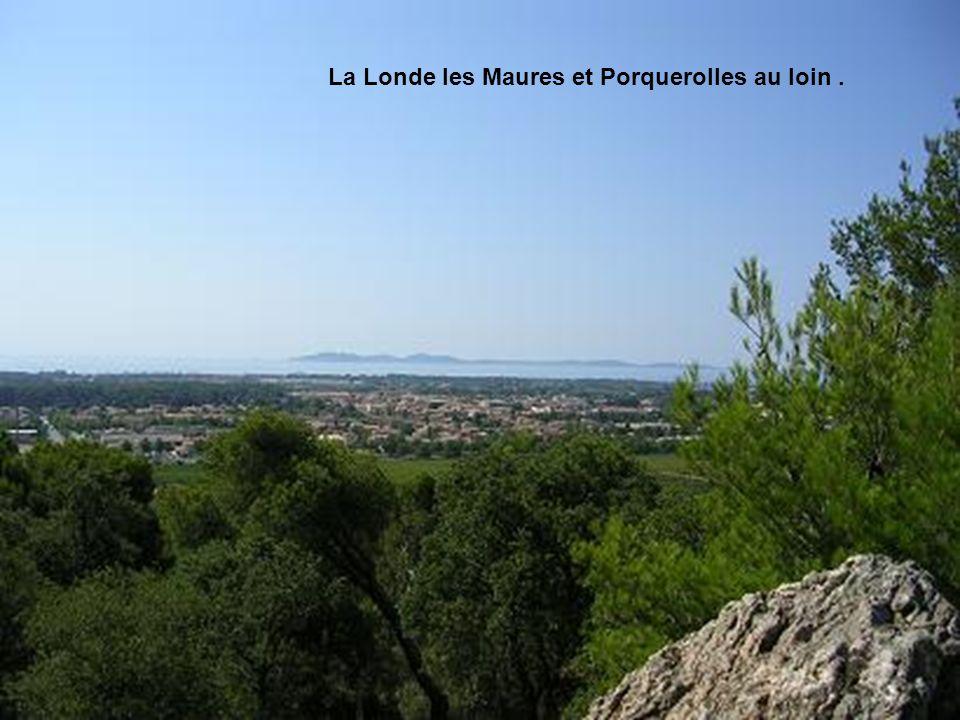 La Londe les Maures et Porquerolles au loin .