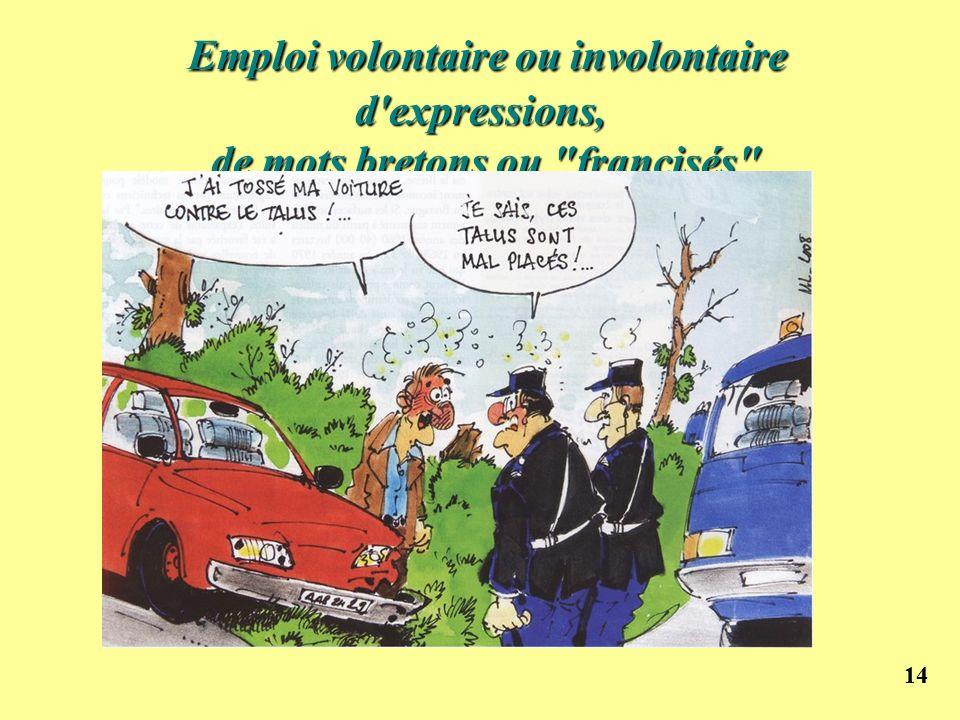 Emploi volontaire ou involontaire d expressions, de mots bretons ou francisés