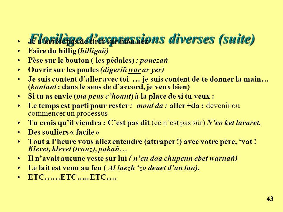 Florilège d'expressions diverses (suite)