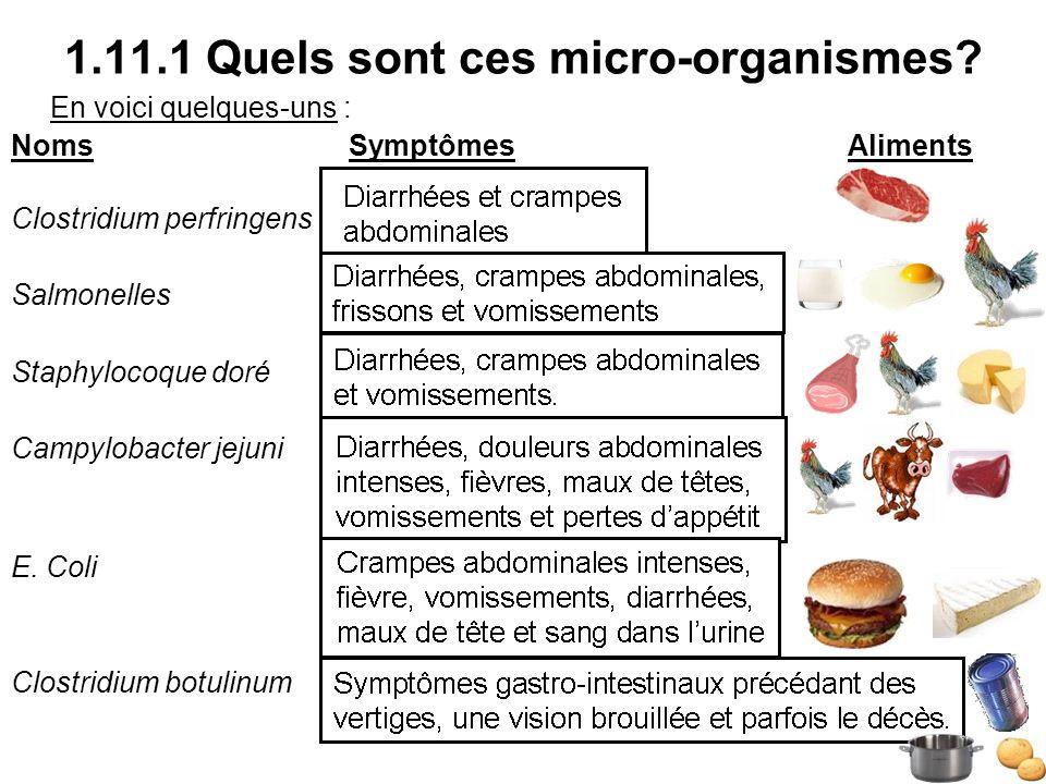 1.11.1 Quels sont ces micro-organismes