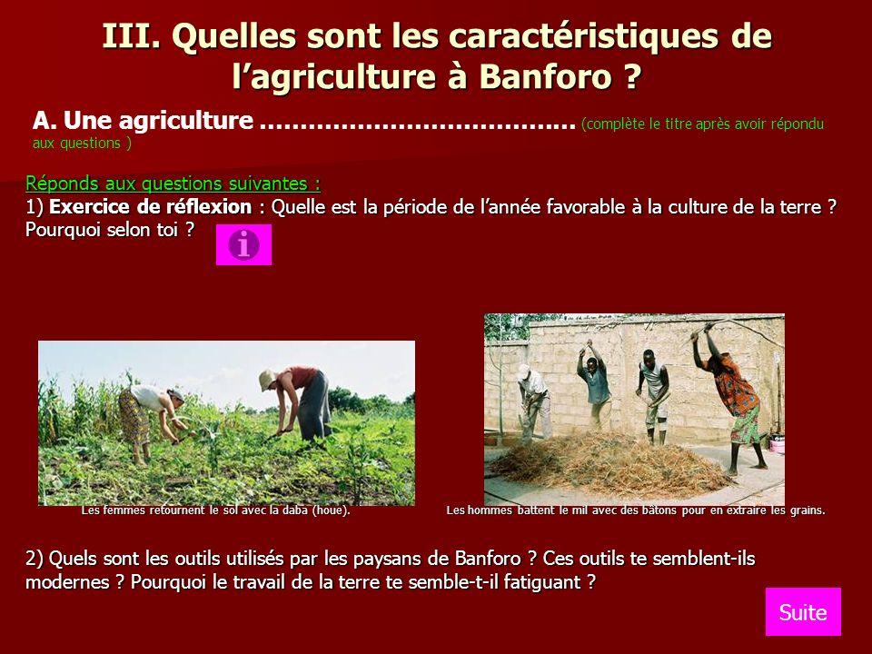 III. Quelles sont les caractéristiques de l'agriculture à Banforo