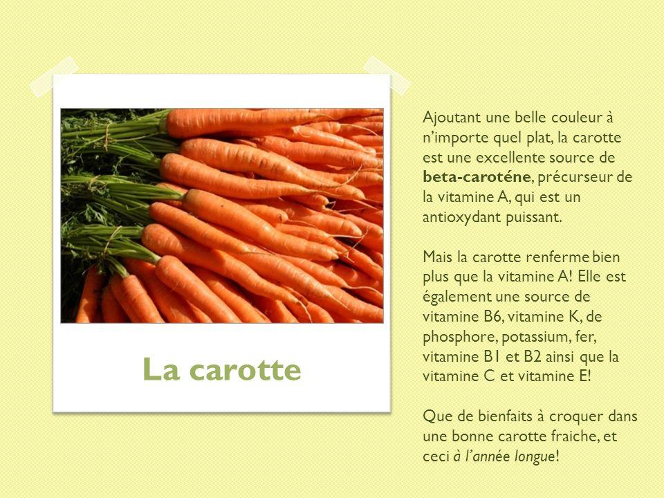 Ajoutant une belle couleur à n'importe quel plat, la carotte est une excellente source de beta-caroténe, précurseur de la vitamine A, qui est un antioxydant puissant. Mais la carotte renferme bien plus que la vitamine A! Elle est également une source de vitamine B6, vitamine K, de phosphore, potassium, fer, vitamine B1 et B2 ainsi que la vitamine C et vitamine E! Que de bienfaits à croquer dans une bonne carotte fraiche, et ceci à l'année longue!