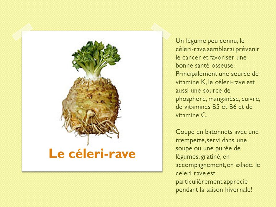 Un légume peu connu, le céleri-rave semblerai prévenir le cancer et favoriser une bonne santé osseuse. Principalement une source de vitamine K, le céleri-rave est aussi une source de phosphore, manganèse, cuivre, de vitamines B5 et B6 et de vitamine C. Coupé en batonnets avec une trempette, servi dans une soupe ou une purée de légumes, gratiné, en accompagnement, en salade, le celeri-rave est particulièrement apprécié pendant la saison hivernale!