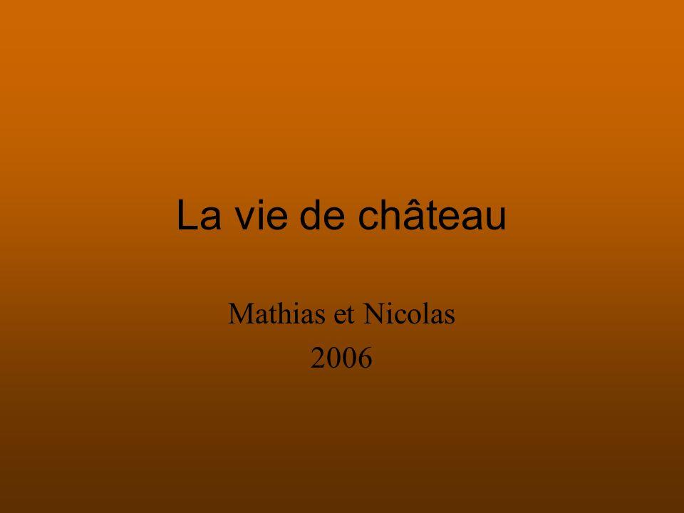 La vie de château Mathias et Nicolas 2006
