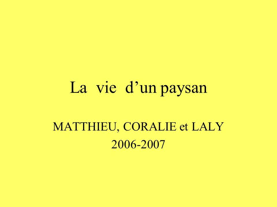 MATTHIEU, CORALIE et LALY 2006-2007
