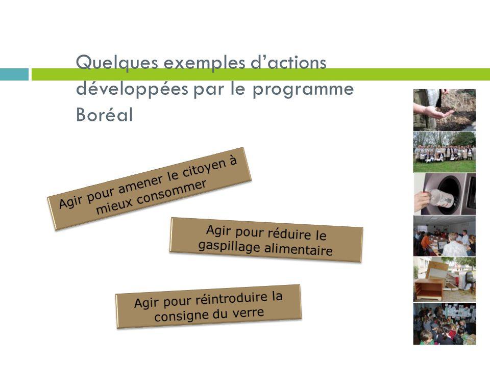 Quelques exemples d'actions développées par le programme Boréal