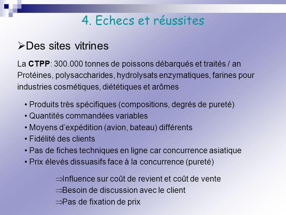 4. Echecs et réussites Des sites vitrines