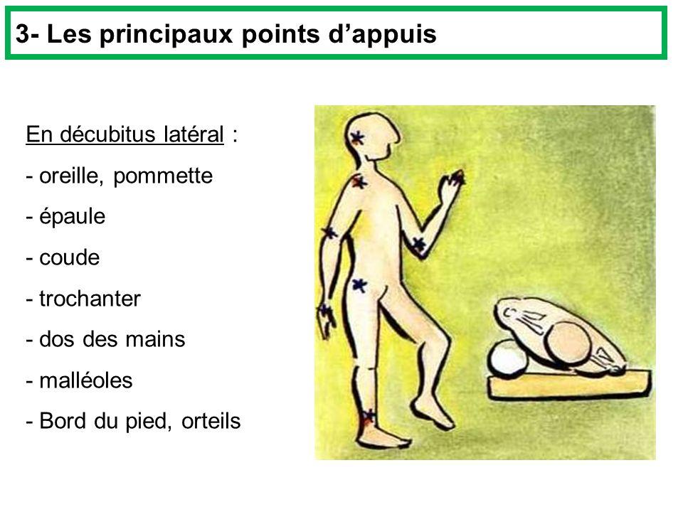3- Les principaux points d'appuis