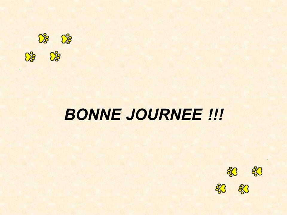BONNE JOURNEE !!!