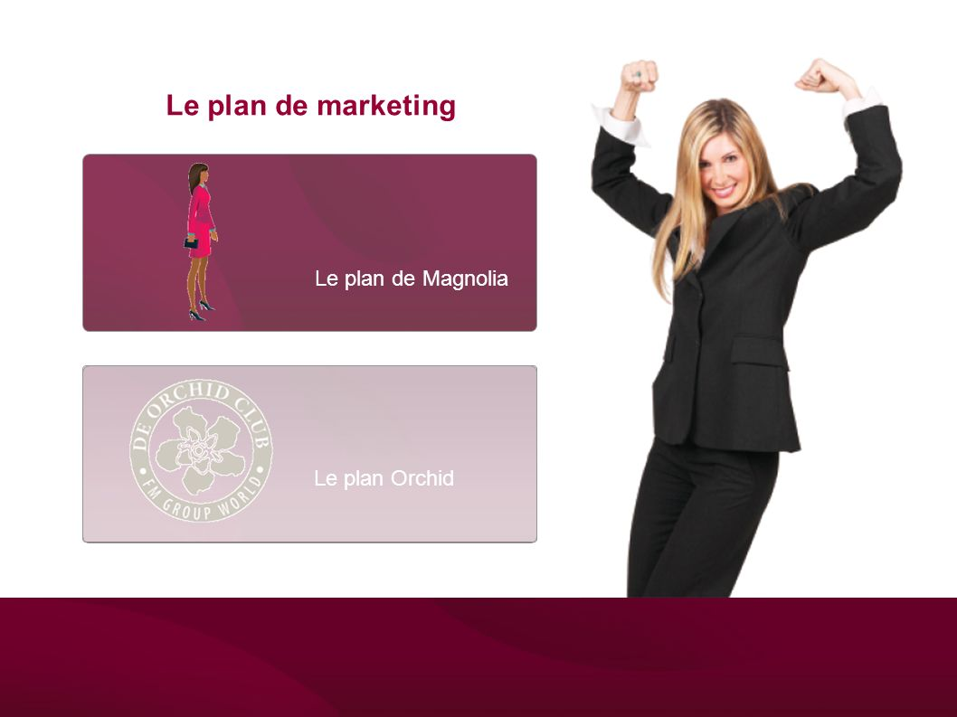 Le plan de marketing Le plan de Magnolia Le plan Orchid