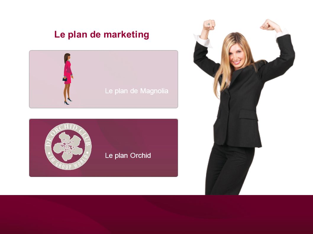 Le plan de marketing Le plan de Magnolia Het Magnolia Plan