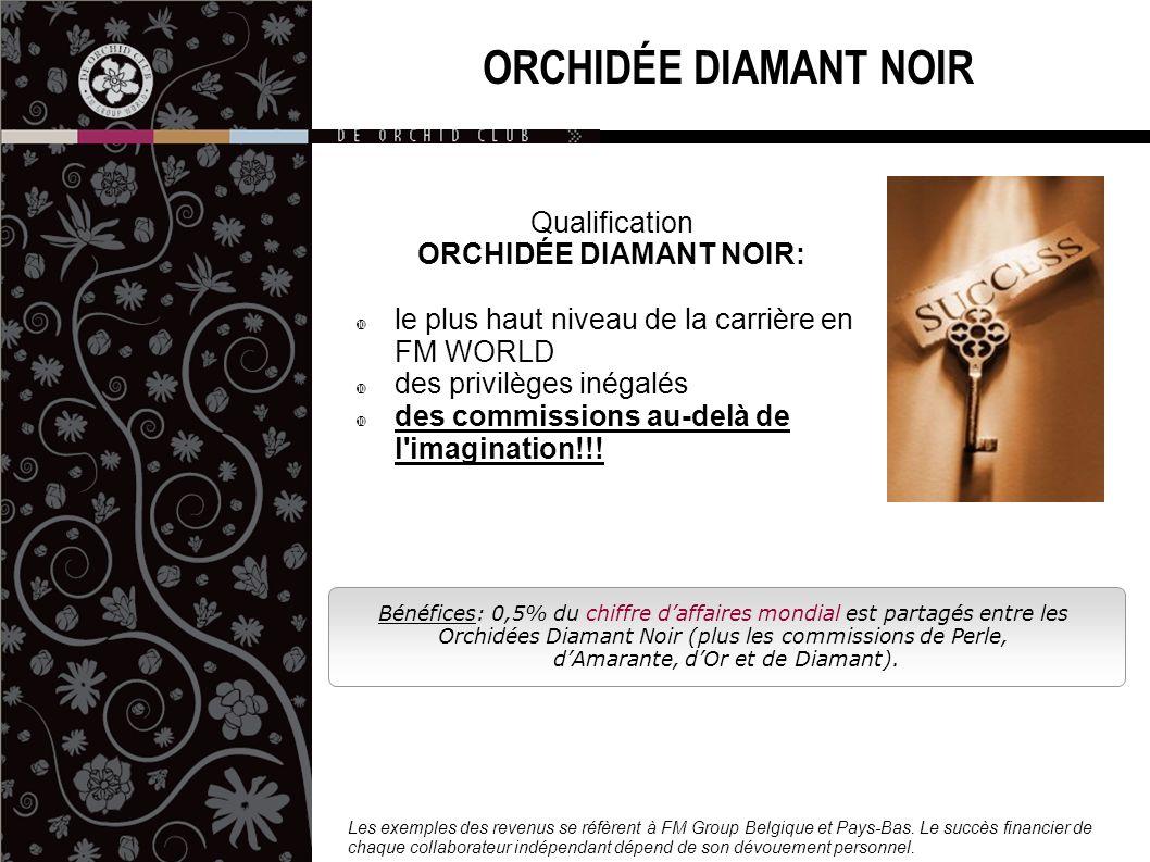 ORCHIDÉE DIAMANT NOIR: