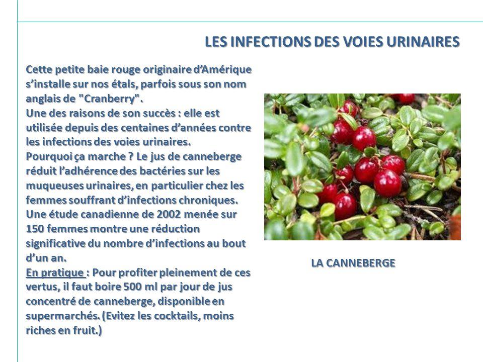 LES INFECTIONS DES VOIES URINAIRES
