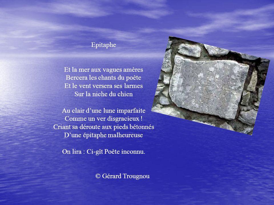 Epitaphe Et la mer aux vagues amères Bercera les chants du poète Et le vent versera ses larmes Sur la niche du chien.