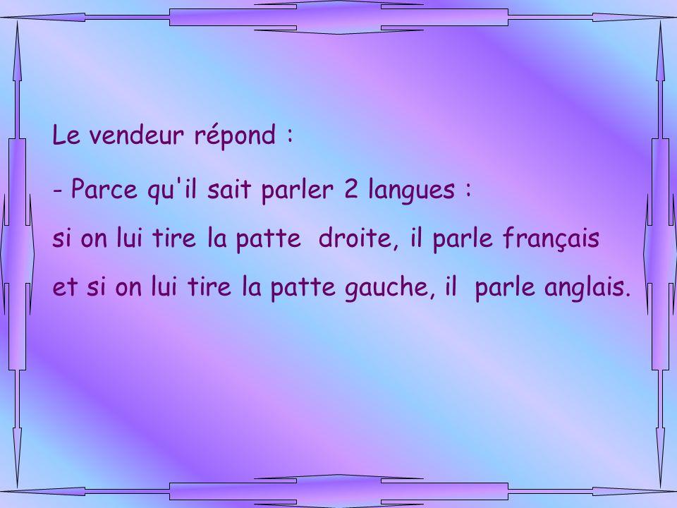 Le vendeur répond : Parce qu il sait parler 2 langues : si on lui tire la patte droite, il parle français.