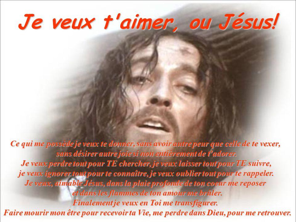 Je veux t aimer, ou Jésus! Ce qui me possède je veux te donner, sans avoir autre peur que celle de te vexer,