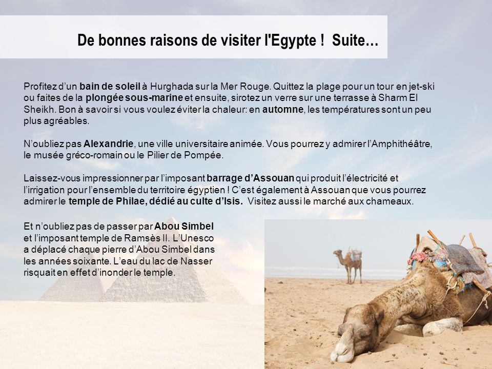 De bonnes raisons de visiter l Egypte ! Suite…