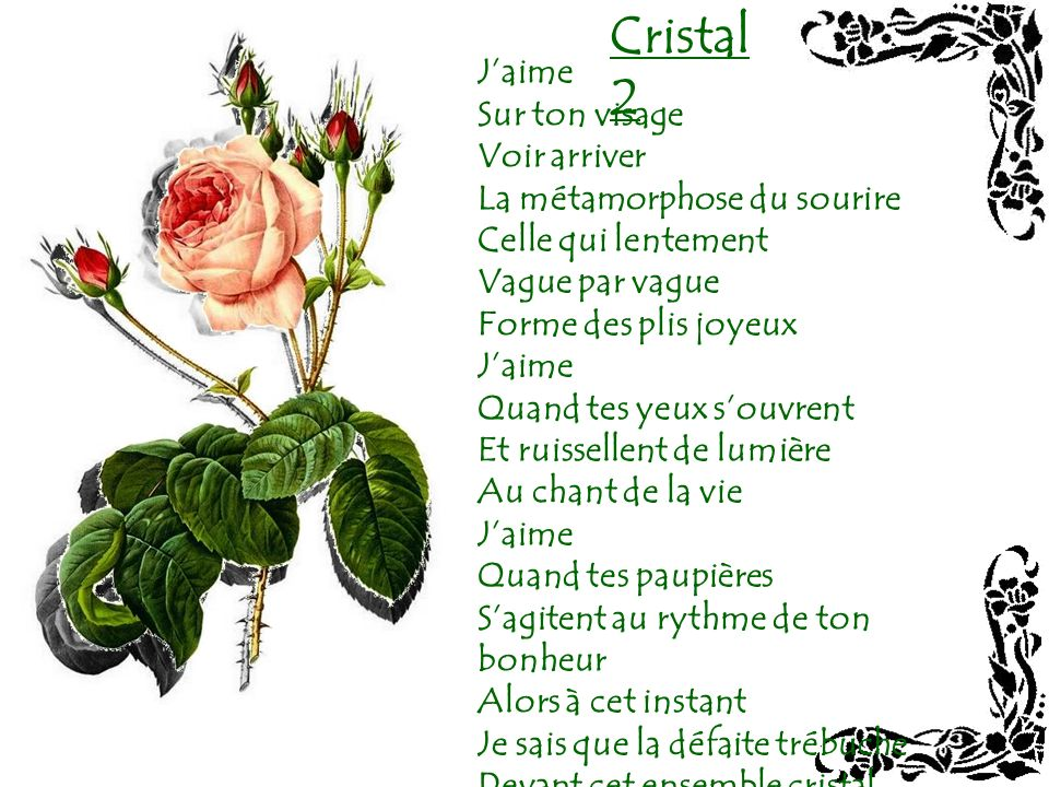 Cristal 2 J'aime Sur ton visage Voir arriver