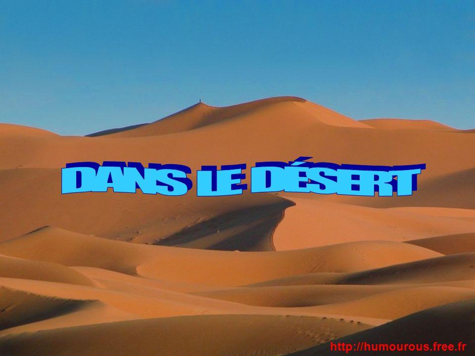 DANS LE DÉSERT http://humourous.free.fr