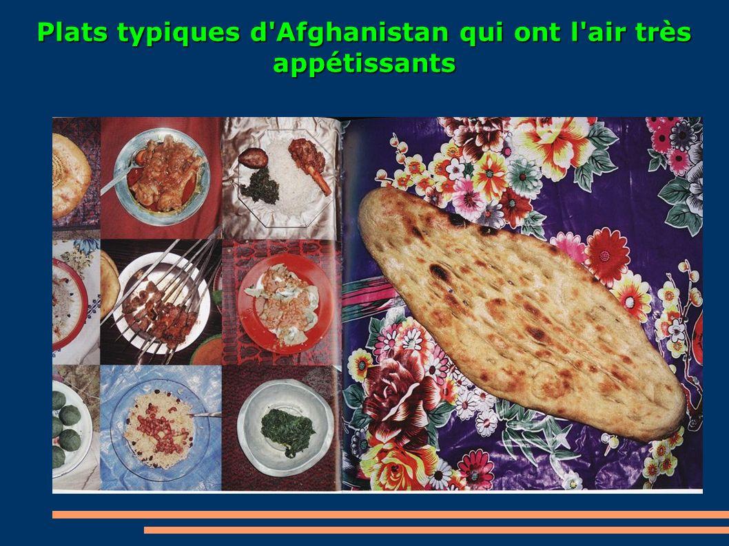 Plats typiques d Afghanistan qui ont l air très appétissants