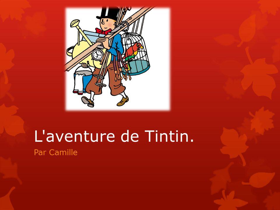 L aventure de Tintin. Par Camille