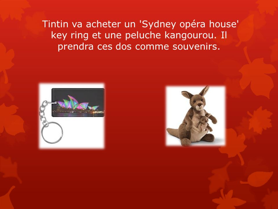 Tintin va acheter un Sydney opéra house key ring et une peluche kangourou. Il prendra ces dos comme souvenirs.