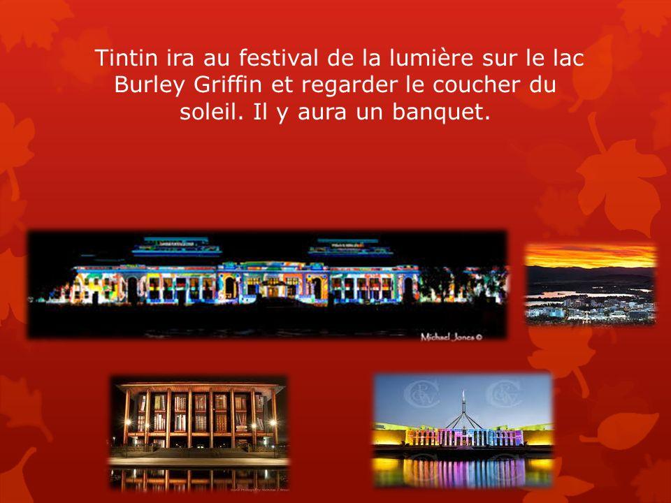 Tintin ira au festival de la lumière sur le lac Burley Griffin et regarder le coucher du soleil. Il y aura un banquet.
