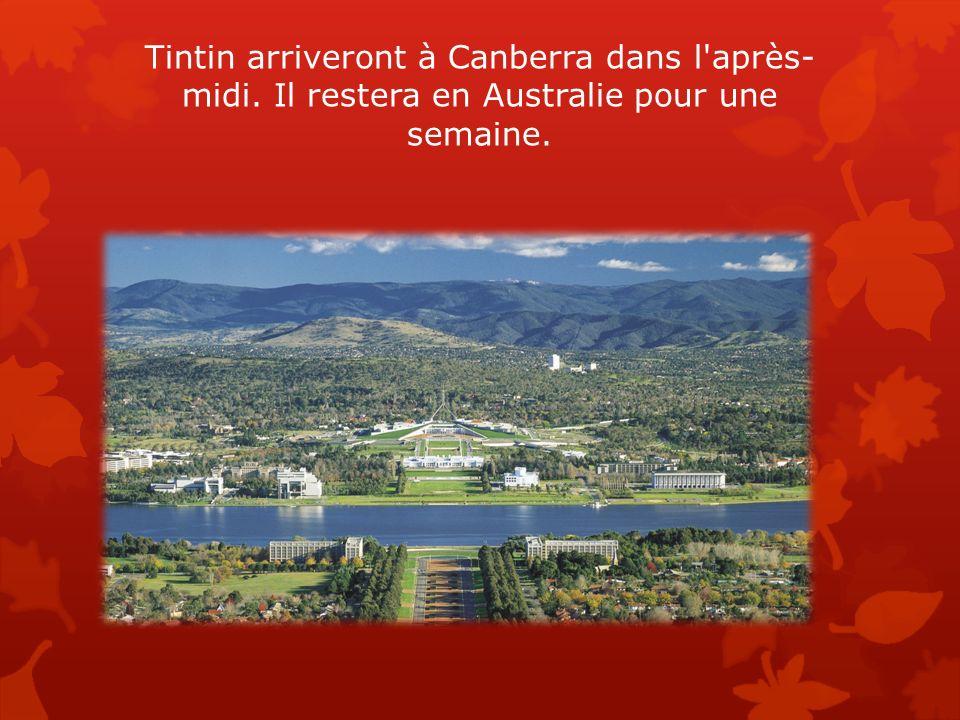 Tintin arriveront à Canberra dans l après-midi