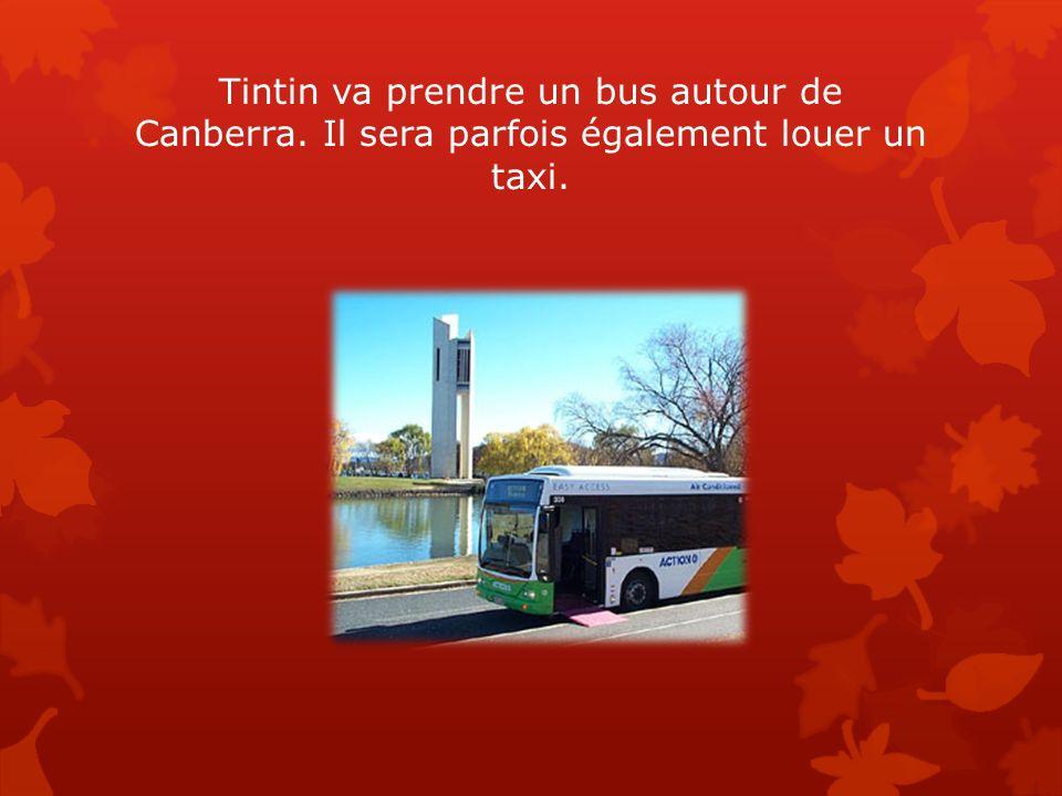 Tintin va prendre un bus autour de Canberra
