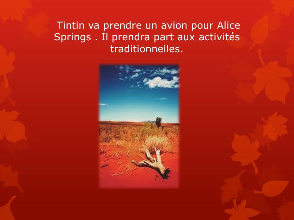 Tintin va prendre un avion pour Alice Springs