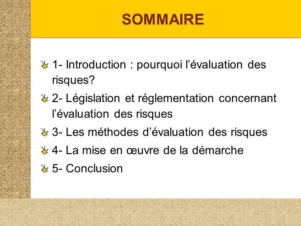 SOMMAIRE 1- Introduction : pourquoi l'évaluation des risques