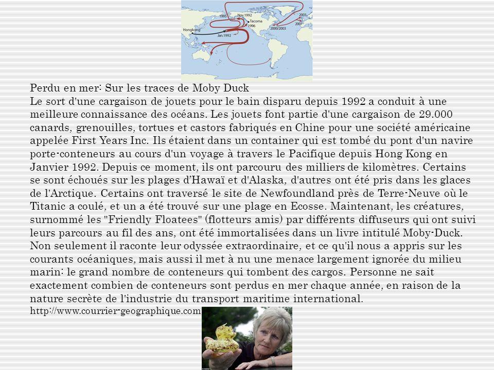Perdu en mer: Sur les traces de Moby Duck