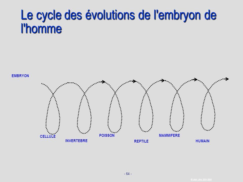 Le cycle des évolutions de l embryon de l homme