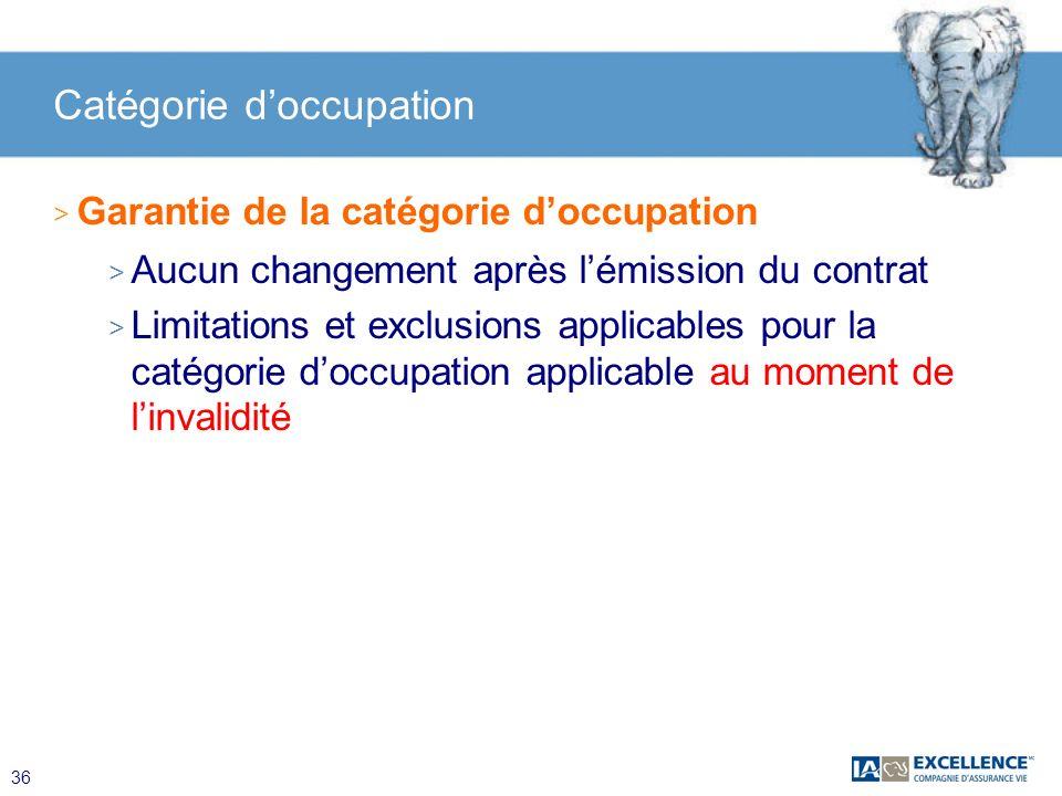 Catégorie d'occupation
