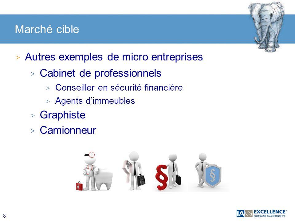 Marché cible Autres exemples de micro entreprises