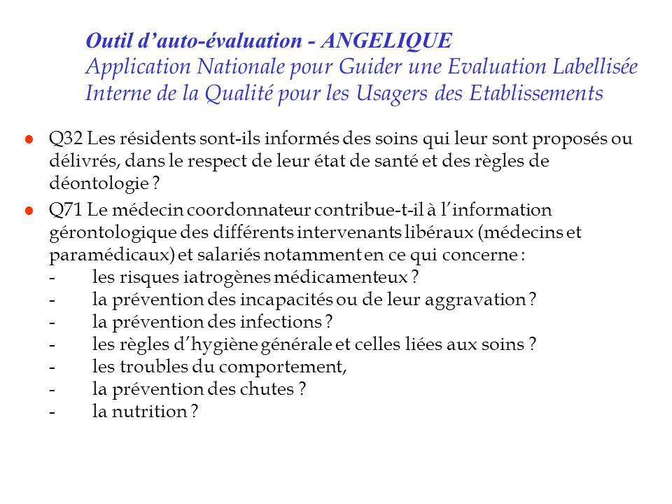 Outil d'auto-évaluation - ANGELIQUE Application Nationale pour Guider une Evaluation Labellisée Interne de la Qualité pour les Usagers des Etablissements