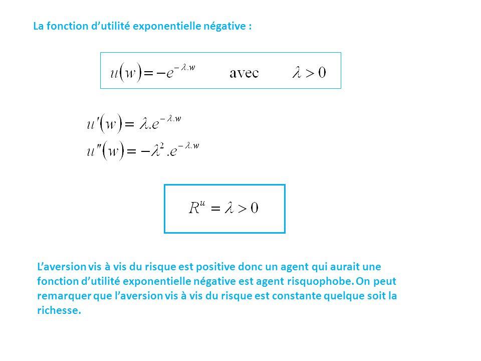 La fonction d'utilité exponentielle négative :