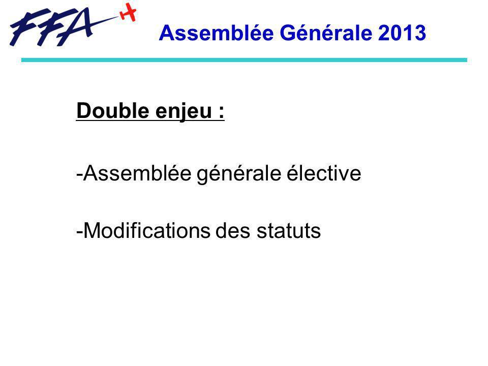 Assemblée Générale 2013 Double enjeu : Assemblée générale élective Modifications des statuts