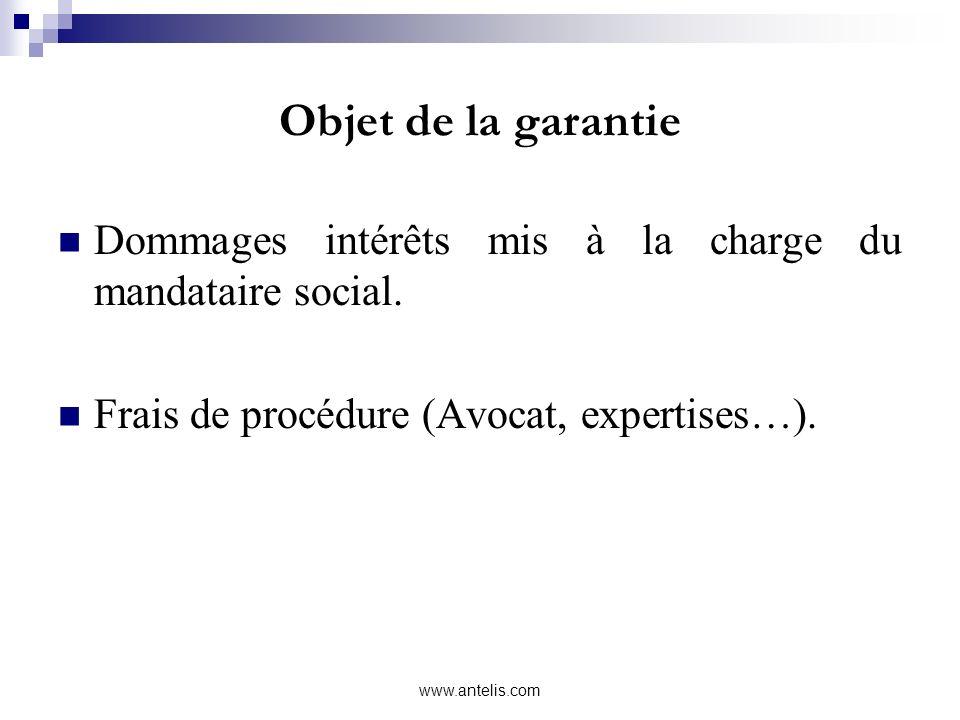 Objet de la garantie Dommages intérêts mis à la charge du mandataire social. Frais de procédure (Avocat, expertises…).