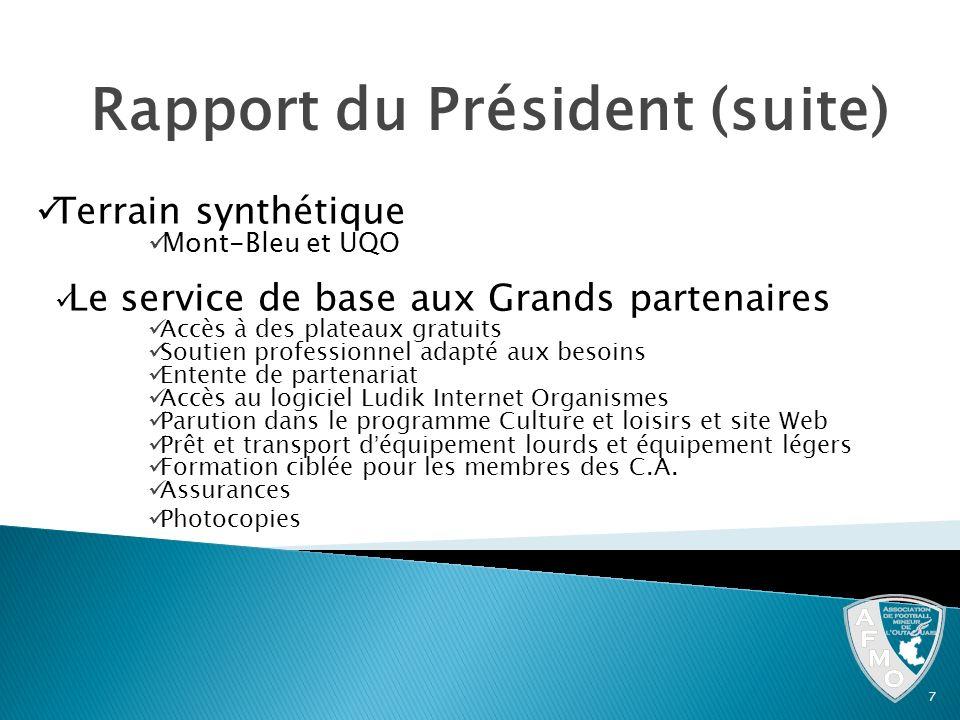 Rapport du Président (suite)
