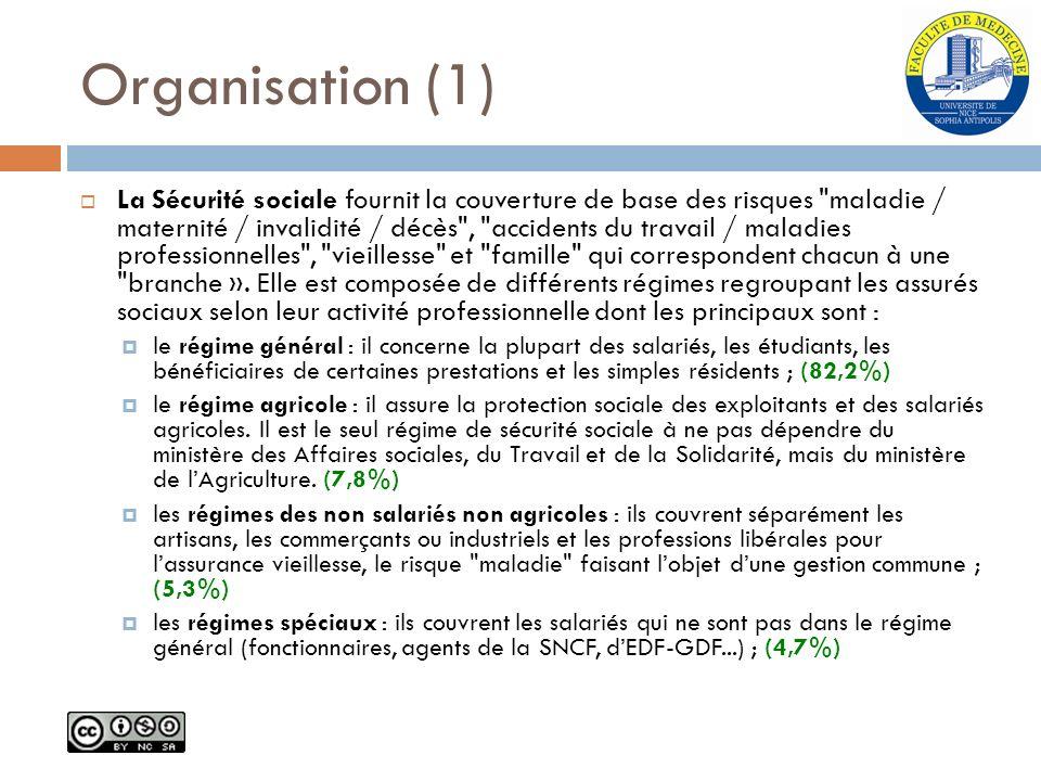 Organisation (1)