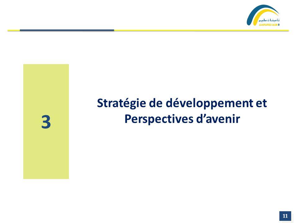 Stratégie de développement et Perspectives d'avenir