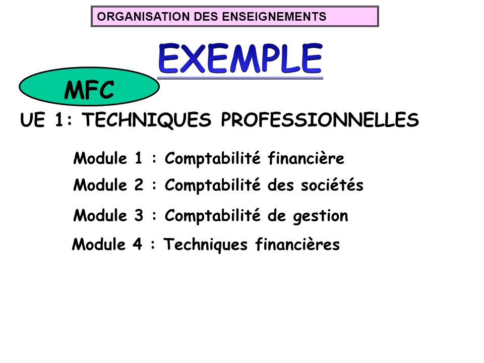 EXEMPLE MFC UE 1: TECHNIQUES PROFESSIONNELLES
