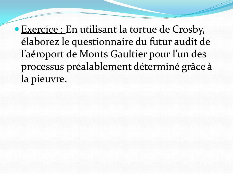 Exercice : En utilisant la tortue de Crosby, élaborez le questionnaire du futur audit de l'aéroport de Monts Gaultier pour l'un des processus préalablement déterminé grâce à la pieuvre.