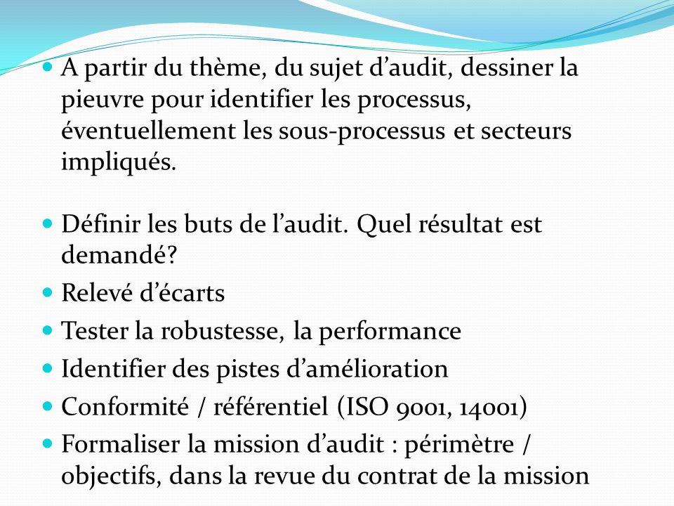 A partir du thème, du sujet d'audit, dessiner la pieuvre pour identifier les processus, éventuellement les sous-processus et secteurs impliqués.