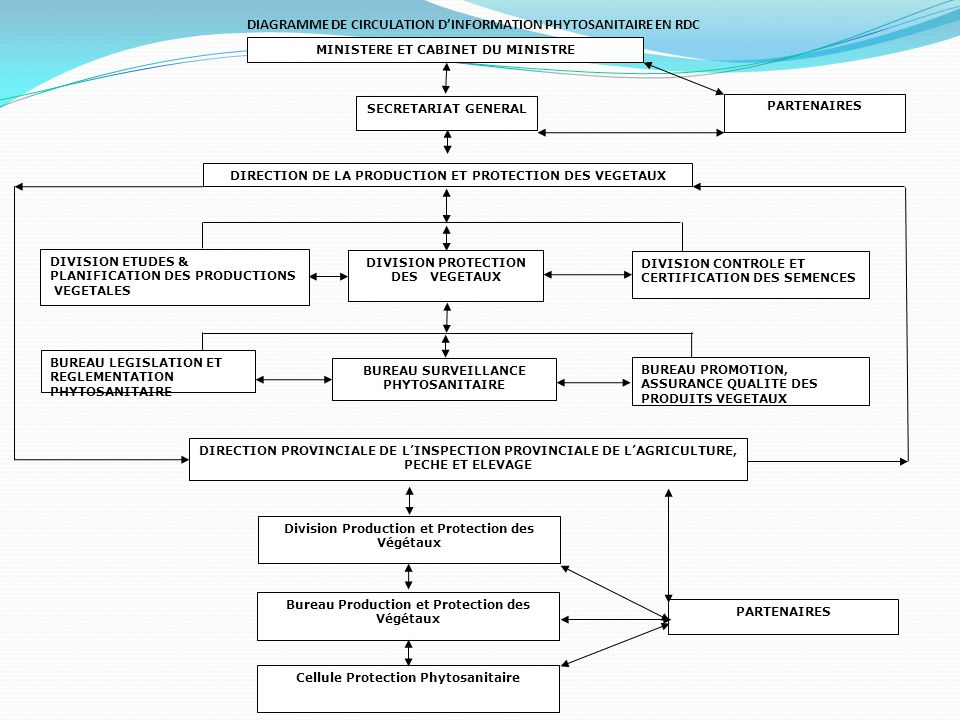 DIAGRAMME DE CIRCULATION D'INFORMATION PHYTOSANITAIRE EN RDC